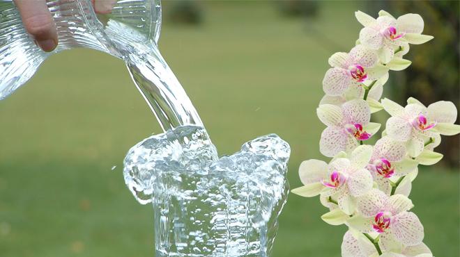 Качественная вода для полива