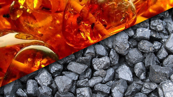 Янтарная кислота и уголь