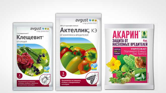 Примеры препаратов для борьбы с паутинным клещем