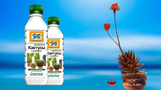 Подкормка для кактусов