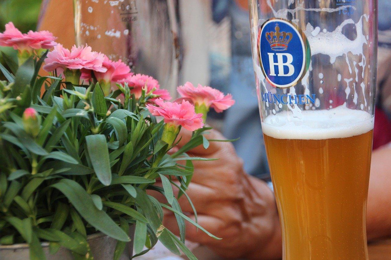 Можно ли поливать пивом растения