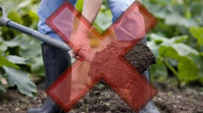 Нежелательно брать почву с огорода